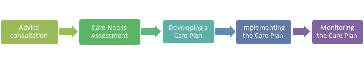 Care Plan Steps